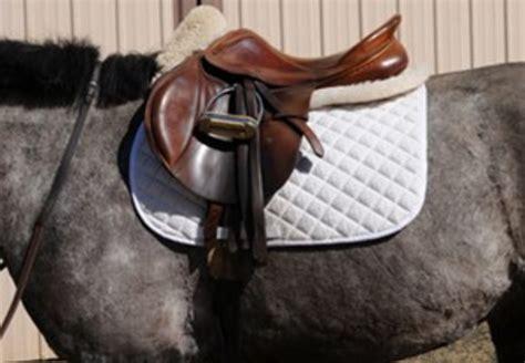 saddle horse tack english riding