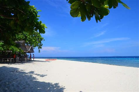 the pamilacan island paradise hotel get great discounts here info bohol