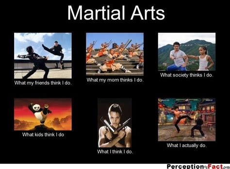 Martial Arts Memes - 44 best images about ƙɑℛɑƭℰ ƙⅈժ on pinterest beast mode a way of life and not good enough