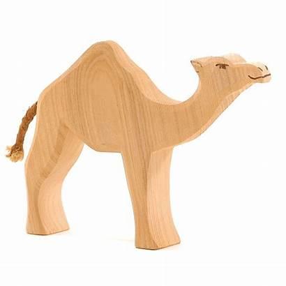 Camel Dromedary Ostheimer Animals Wild Toy Toys