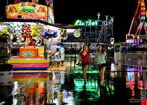 MN State Fair and Great Pyrenees Photography by Debra ...