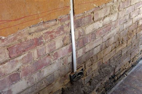 penetrating rising damp active pest solutions