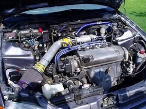 D16y7 Non Vtec Engines Diagram