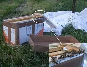 Combien De Kilometre En Reserve : combien de ruches en r serve ~ Medecine-chirurgie-esthetiques.com Avis de Voitures