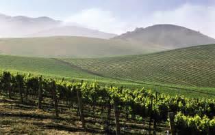 Santa Barbara California Wineries