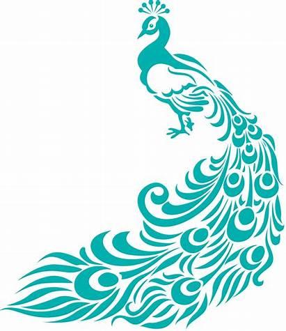 Clipart Peacock Designs Border Clip Pattern Patterns