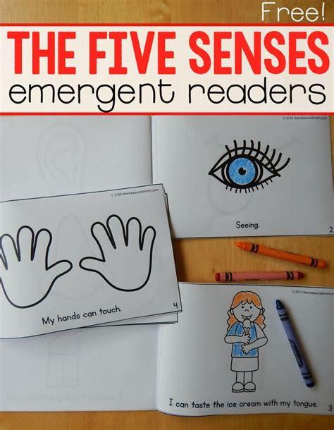 best 25 five senses preschool ideas on 5 296 | 311ea22667f0e64925185defdcccc6fb