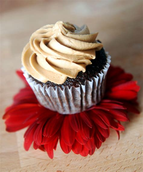 These chocolate cupcakes are topped with a fresh whip of dalgona coffee and sprinkled with a ton of yummy goodies. Espresso Chocolate Cupcakes with Espresso Buttercream   The Novice Chef
