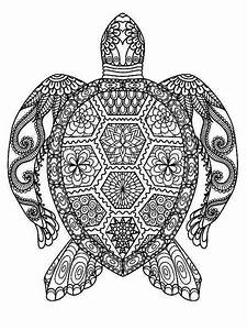 Turtle Mandala Crafts Pinterest Mandala Coloring