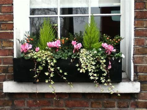fioriere per davanzale finestra fioriere per davanzali
