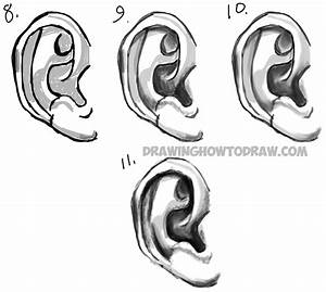 How To Draw Human Ears Step By Step
