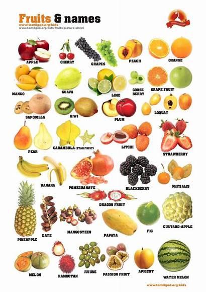 Fruits Names Sheet Types English Vegetables Slideshare