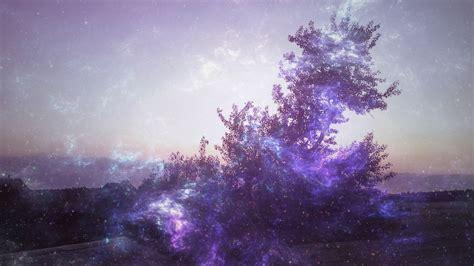 Lights Wallpaper Hd 1920x1080 by 1920x1080 Hd Wallpaper Tree Smoke Violet Northern