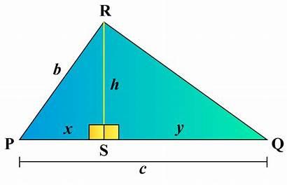 Triangle Altitude Right Sqrt Xy