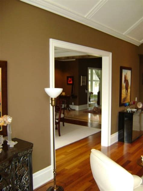 lovin  shades  chocolate brown downtown house