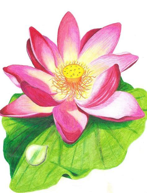 lotus flower colors lotus flower with crayons coloring designs in 2019
