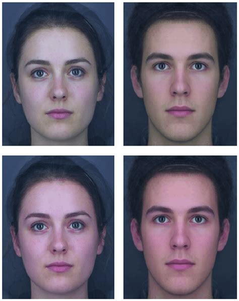 Examples of the type of face stimuli used. The top row shows the lowest...   Download Scientific ...