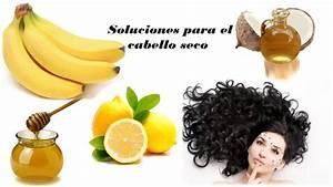 Mascarilla para el pelo seco y maltratado for La mejor receta casera para hidratar el pelo seco