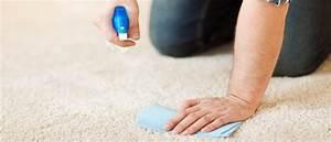 Blutflecken Entfernen Teppich : blutflecken entfernen mit diesen 7 tipps klappt s auf jeden fall ~ Watch28wear.com Haus und Dekorationen