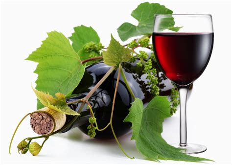 grapes and wine home wallpaper wine from grapes photo