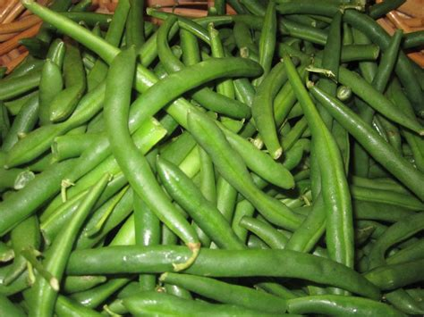 freeze beans freezing green beans the charmed kitchen