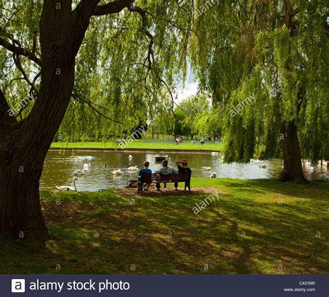 3 persone rilassarsi seduti su una panchina nel parco sotto alcuni alberi di salice in una