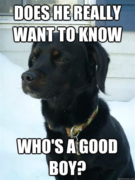 Good Boy Memes - does he really want to know who s a good boy philosophical puppy quickmeme