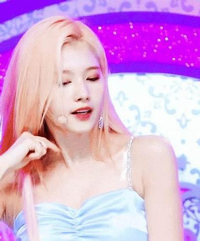 Sana Hair Twice Blonde Pink Brown Knetizen