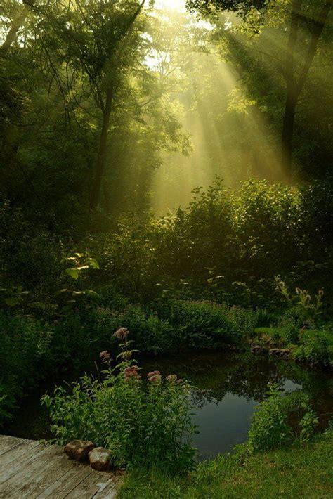 beautiful nature photography mother nature