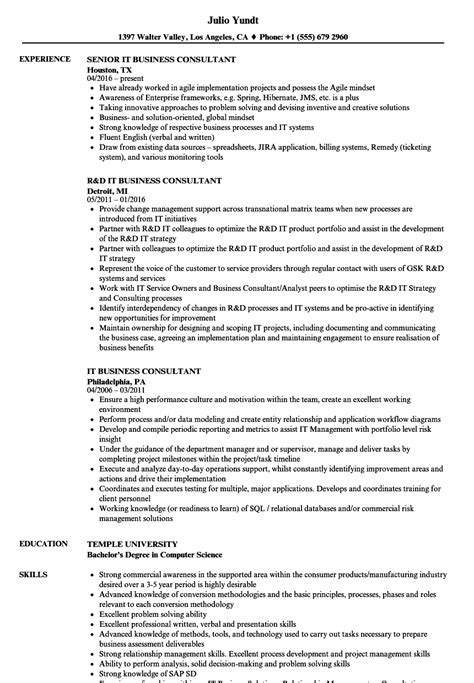 Business Consultant Resume by It Business Consultant Resume Sles Velvet