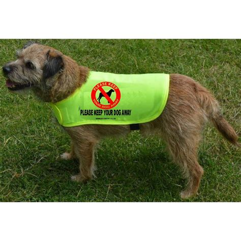 Keep Your Dog Away  Fluorescent Neon Yellow Dog Coat