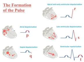 ECG Made Easy Nursing EKG Interpretations