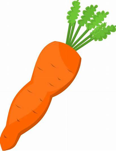 Carrot Clip Openclipart Svg Onlinelabels Modified Into