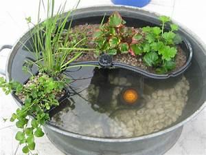 Kübel Bepflanzen Ideen : pin von katja e auf garten garden water features in the garden und water garden ~ Buech-reservation.com Haus und Dekorationen