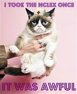 1000+ images about Nursing school humor on Pinterest ...