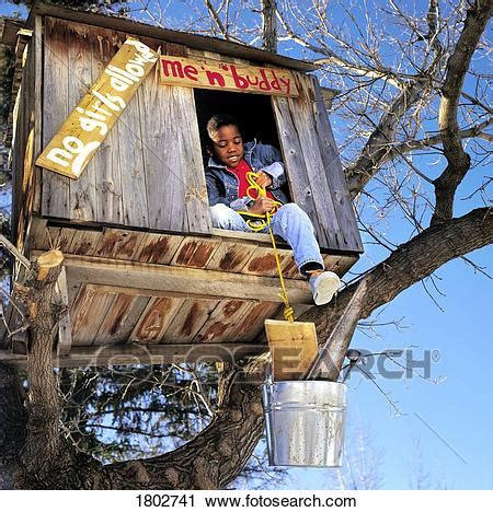 Stock Photography Of Boy Renovating Treehouse 1802741