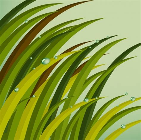 grass background green icons decoration dew droplets decor
