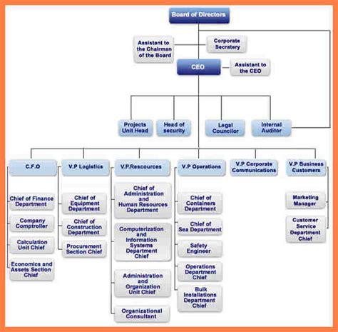 organization chart  company company letterhead