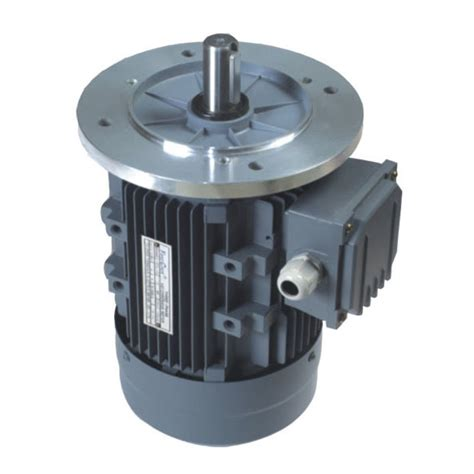 Electric Motor Italy china ms italy electric motor 0 18kw 7 5kw photos