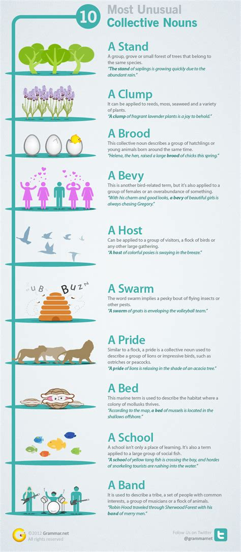 10 Most Unusual Collective Nouns  An Infographic  English With A Twist