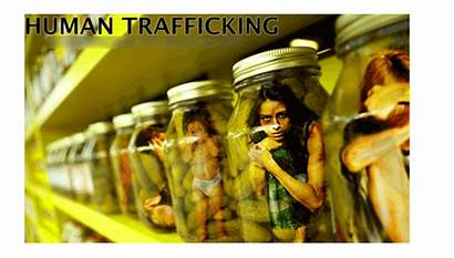 Anak Perdagangan Tubuh Orang Organ Penculikan Modus