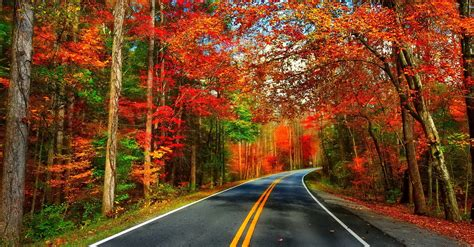 Autumn Roads Wallpapers by Autumn Road Wallpaper And Background Image 1920x1003