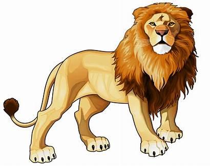 Lion Clip Cartoon Clipart Clipartix