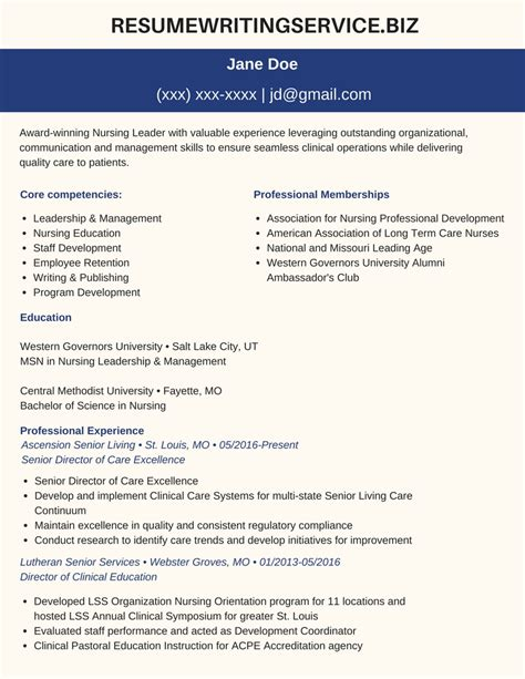 resume and cv writing service professional msn resume sle resume writing service