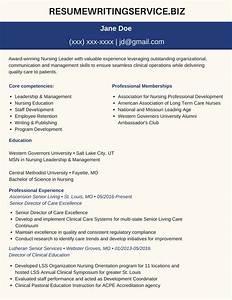 resume writer professionalprofessional msn resume sample With personal resume writer