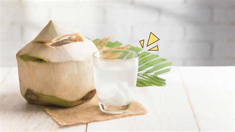benar air kelapa muda bisa membuang racun berbagi