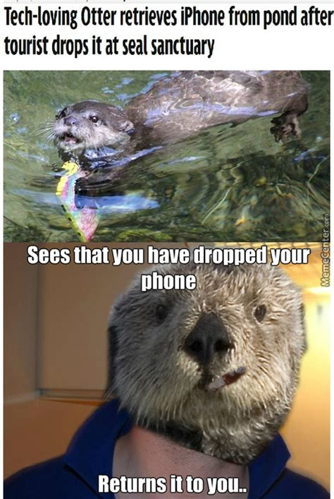 Sea Otter Meme - otter memes best collection of funny otter pictures