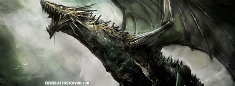 dragons facebook covers firstcoverscom