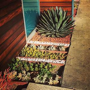 Inspirations Find Your Best Style Of Succulent