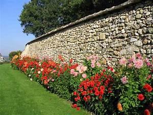Quand Planter Des Dahlias : quand planter des bulbes de glaieuls l 39 atelier des fleurs ~ Nature-et-papiers.com Idées de Décoration